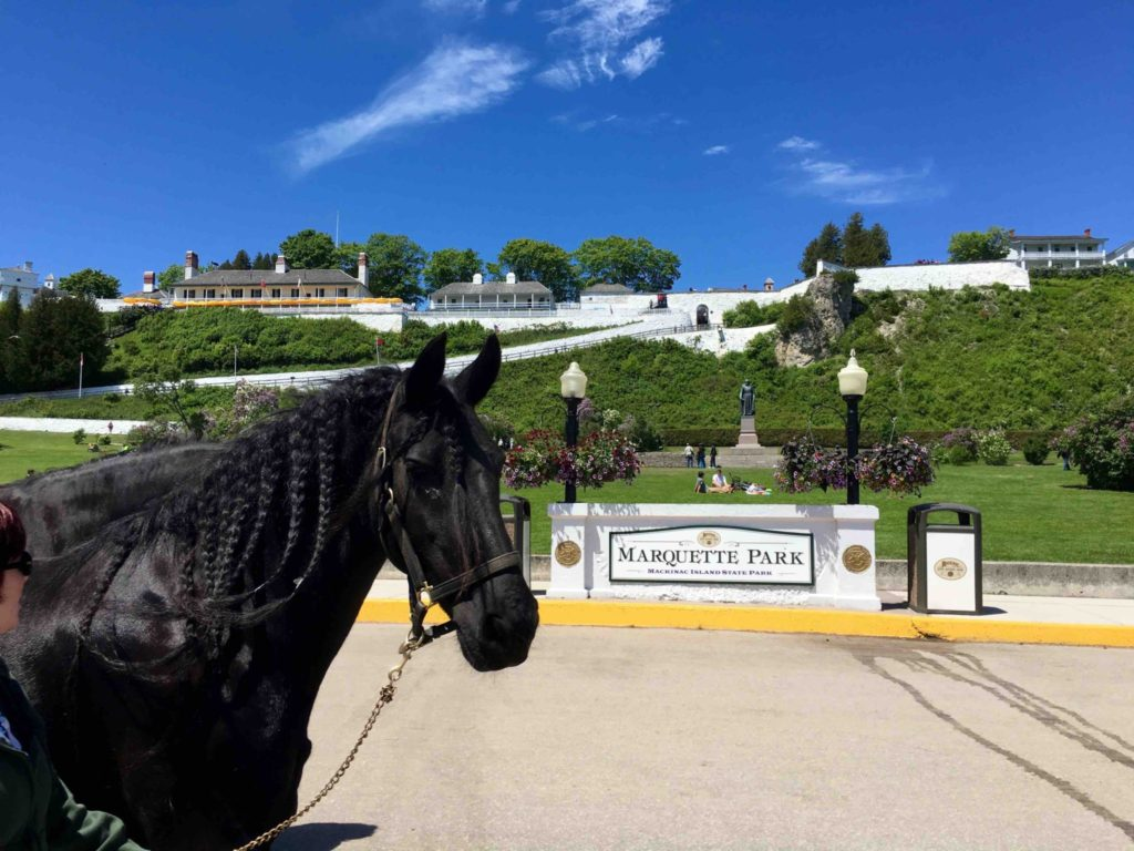 A horse photo-bombs this picture of Marquette Park and Fort Mackinac.