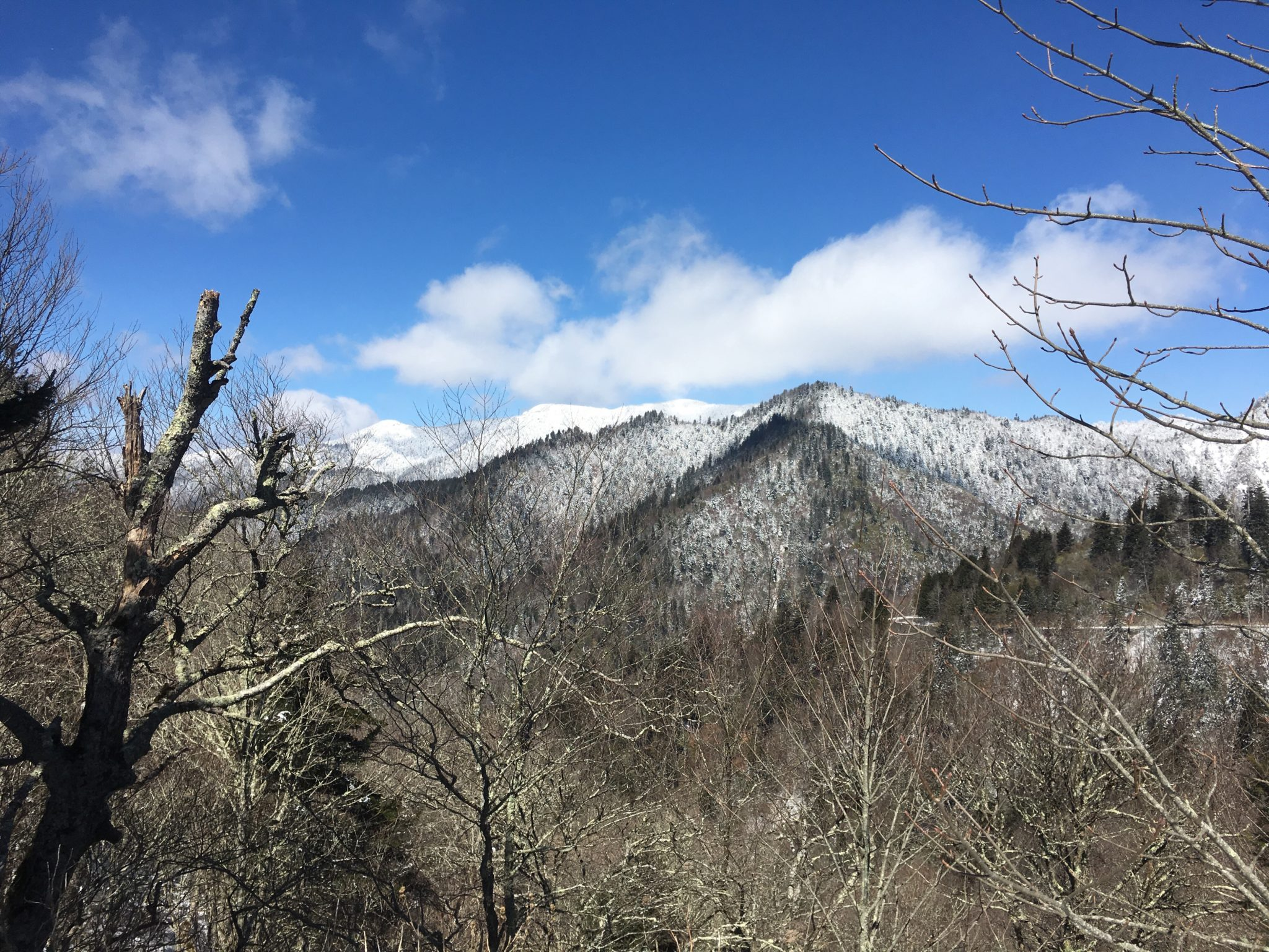 Beautiful view from Newfound Gap
