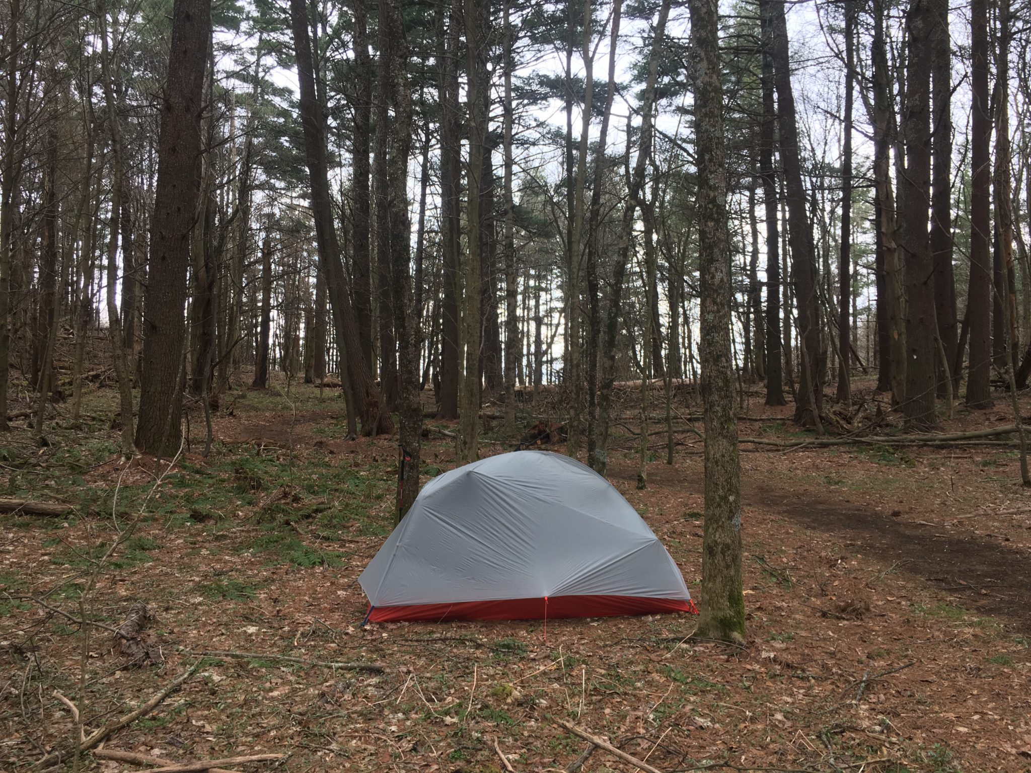 My first night camping alone in the woods without Michael