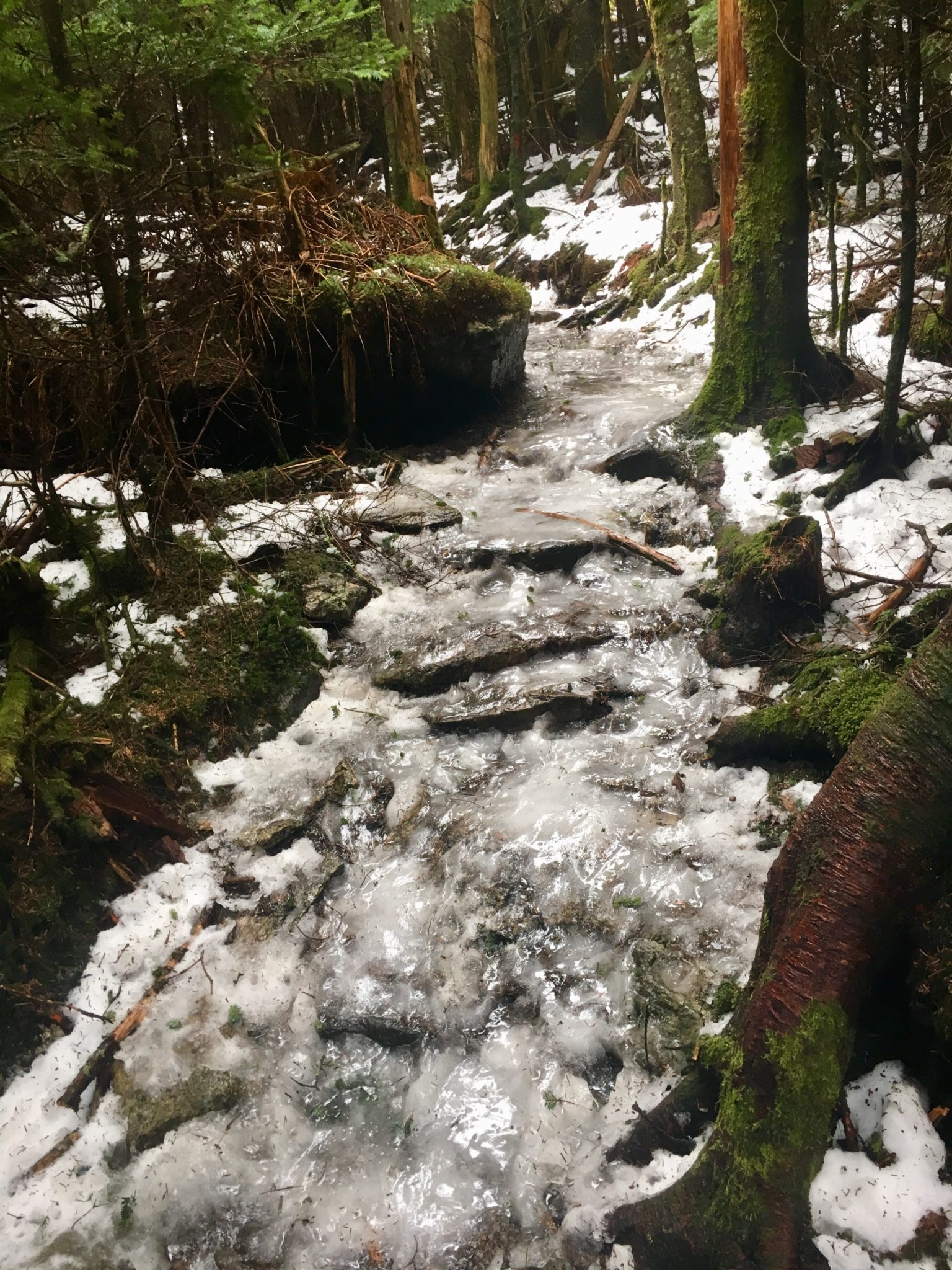 The trail was a river of ice