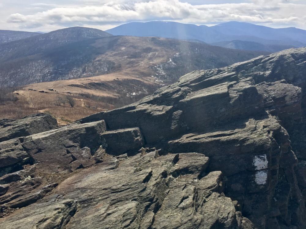 White blazes on Hump Mountain
