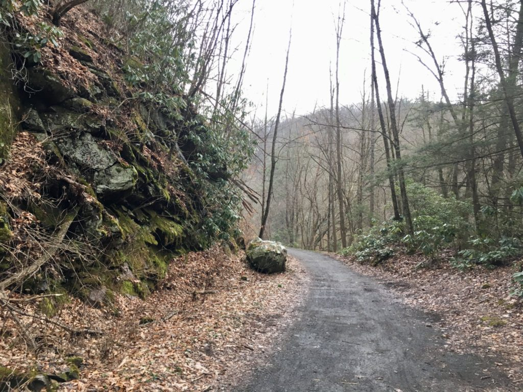 Nice and easy along the Virginia Creeper Trail