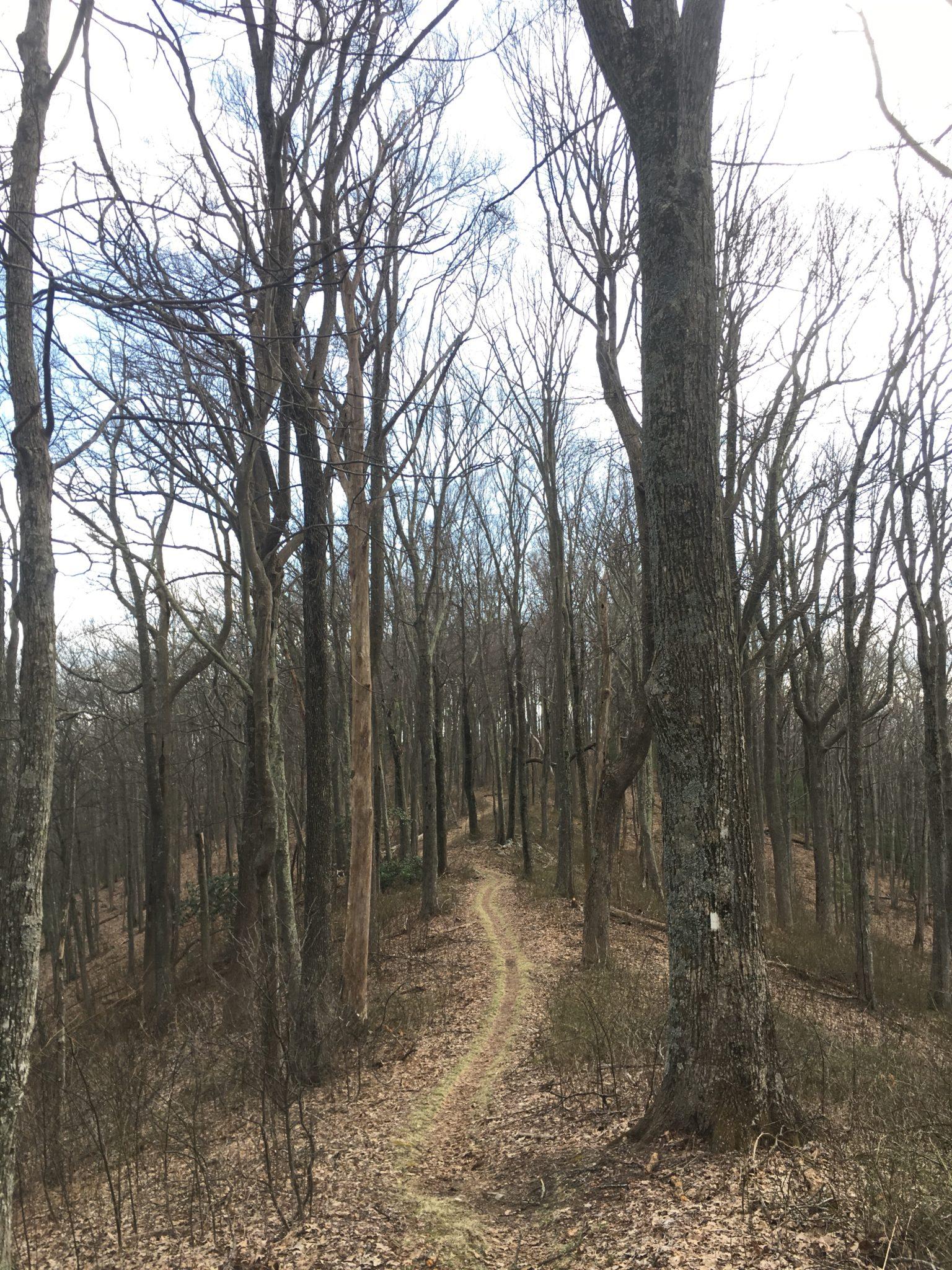 Walking along the ridgeline