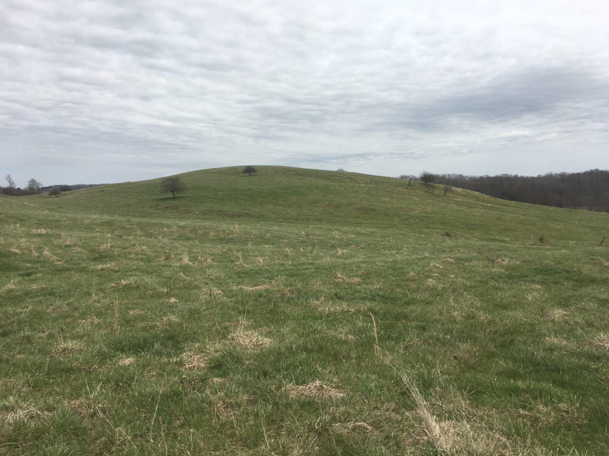 Hiking through pastures
